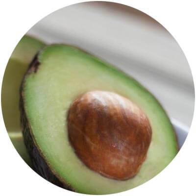 Avocado is one of the certified organic ingredients used in DNA Organics hair care and colour products