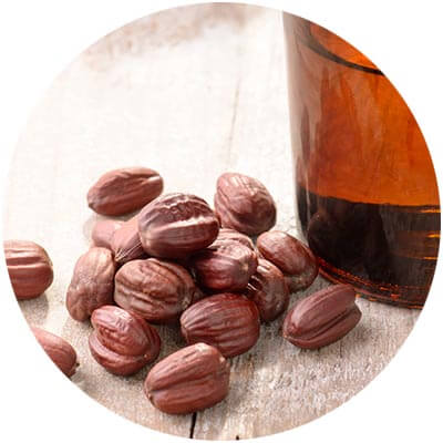 Jojoba Oil is one of the certified organic ingredients used in DNA Organics hair care and colour products