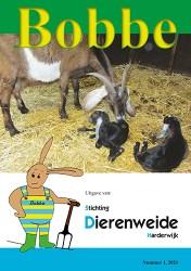 sd-harderwijk-2021-04