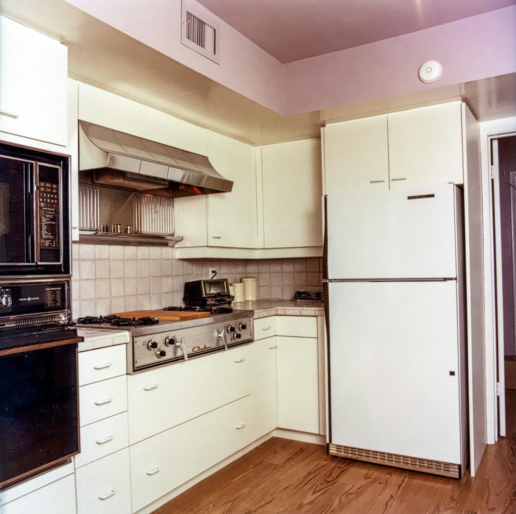 Free Standing Refrigerators Danilo Nesovic Designer