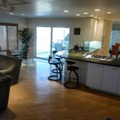 Euro Style Kitchen Cabinets Atlanta Clean Contemporary Great Room Addition - Danilo Nesovic ...