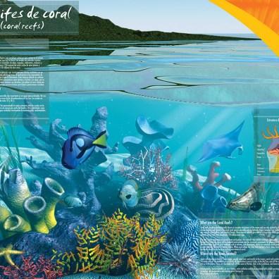 Poster Arrecife para Grupo Xcaret