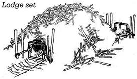 Beaver Wiring Diagrams As Well As Dc Motor Wiring
