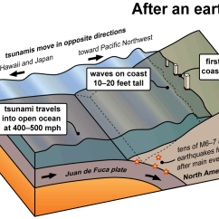 Tsunami Diagram With Labels 1999 Dodge Durango Infinity Stereo Wiring Tsunamis Wa Dnr These Earthquakes Also Cause Very Large And Damaging The Following Series Of Diagrams Shows How Are Created Along Cascadia Subduction