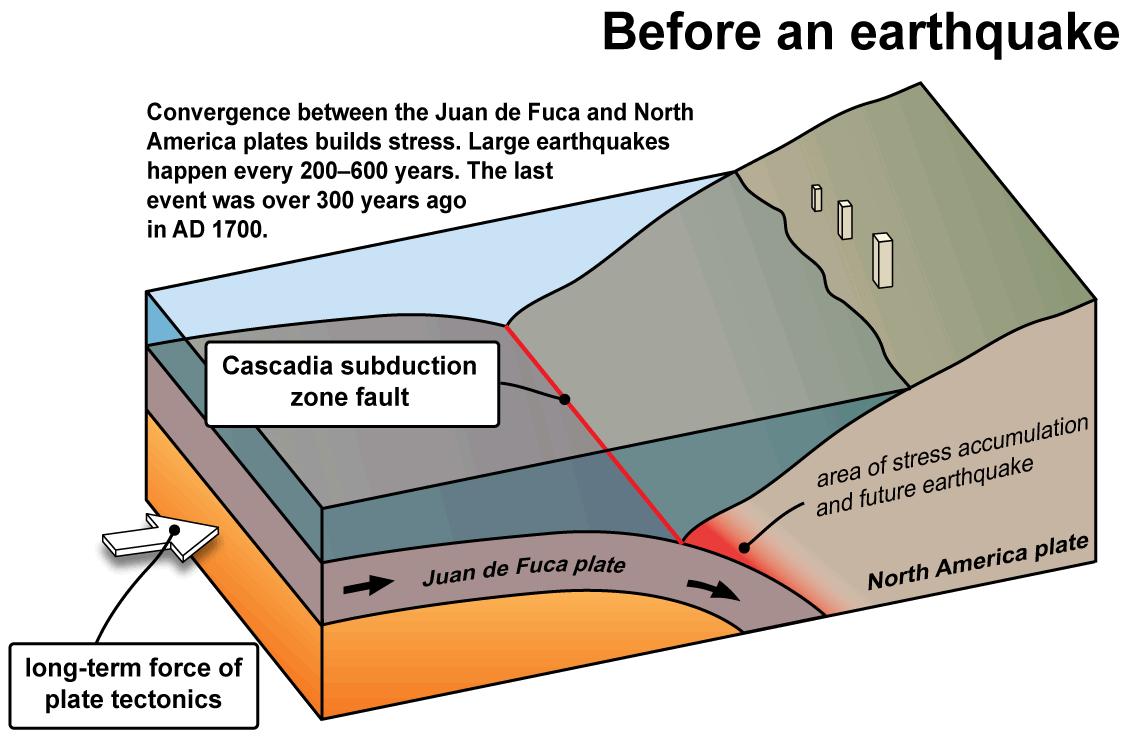 tsunami diagram with labels cat 5e vs 6 wiring tsunamis wa dnr the cascadia subduction zone