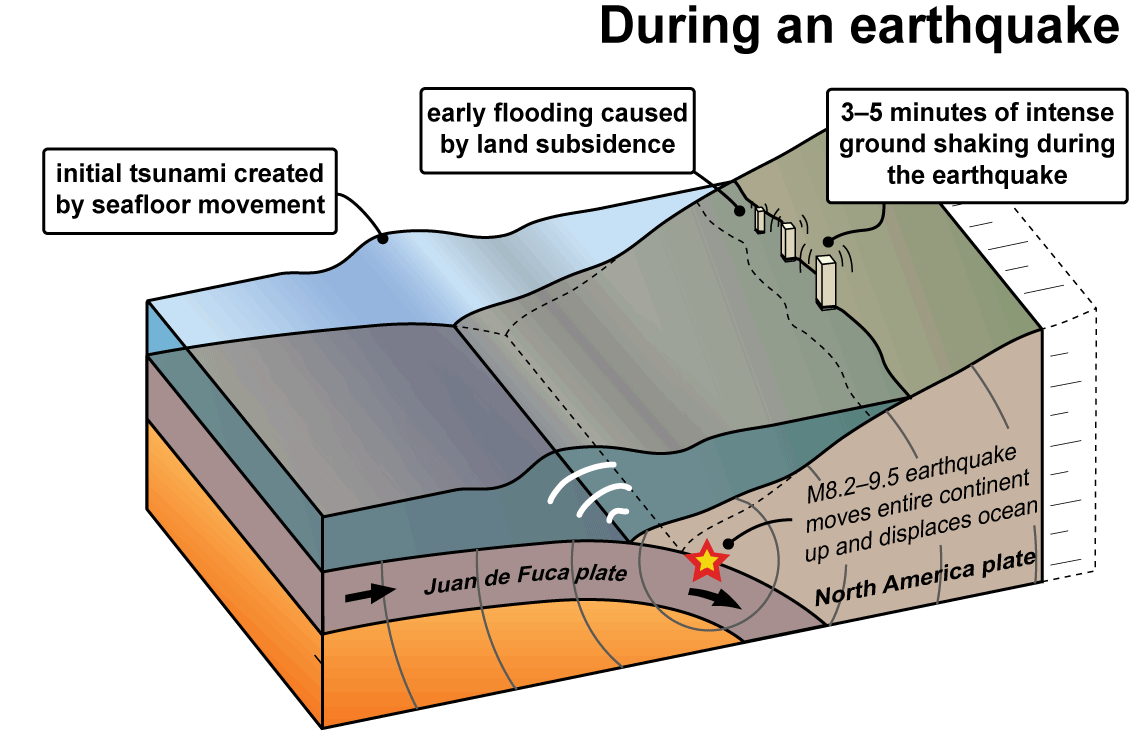 tsunami diagram with labels opel corsa utility radio wiring tsunamis wa dnr these earthquakes also cause very large and damaging the following series of diagrams shows how are created along cascadia subduction