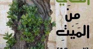 جوال دعاة الشام - يخرج الحي من الميت
