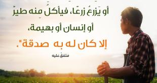 المجتمع المسلم - صدقة