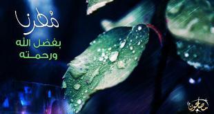 الشتاء - مطرنا بفضل الله ورحمته