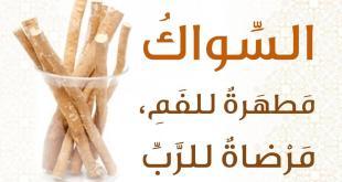 آداب إسلامية - السواك مطهرة للفم مرضاة للرب