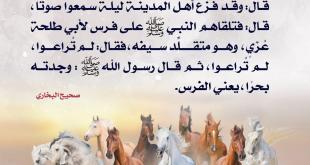 جهاد - رسول الله أسوة الشجعان وقائد الفرسان