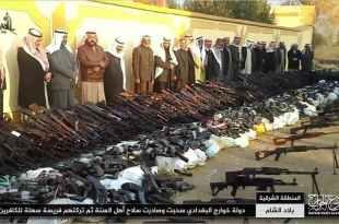 الثورة السورية - سلاحك عزك