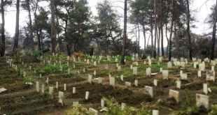 الثورة السورية - مقبرة الشهداء في جبل التركمان