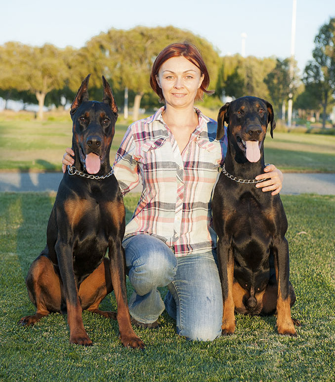 European Dobermans