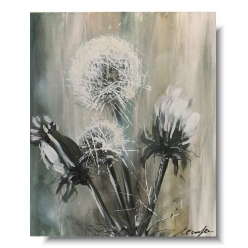Obrazy kwiaty delikatne dmuchawce