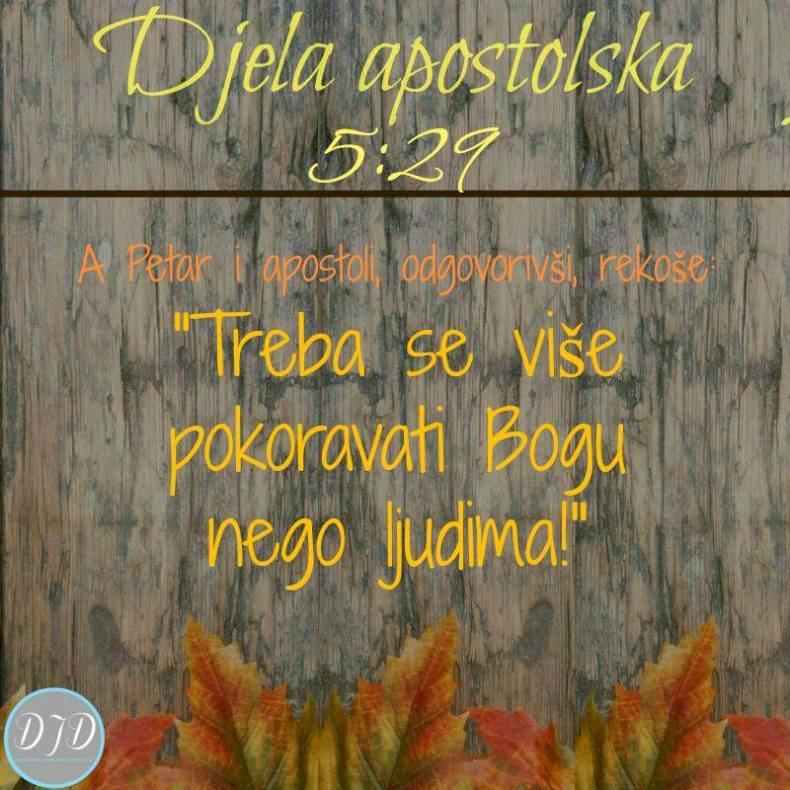 DA- stih 5