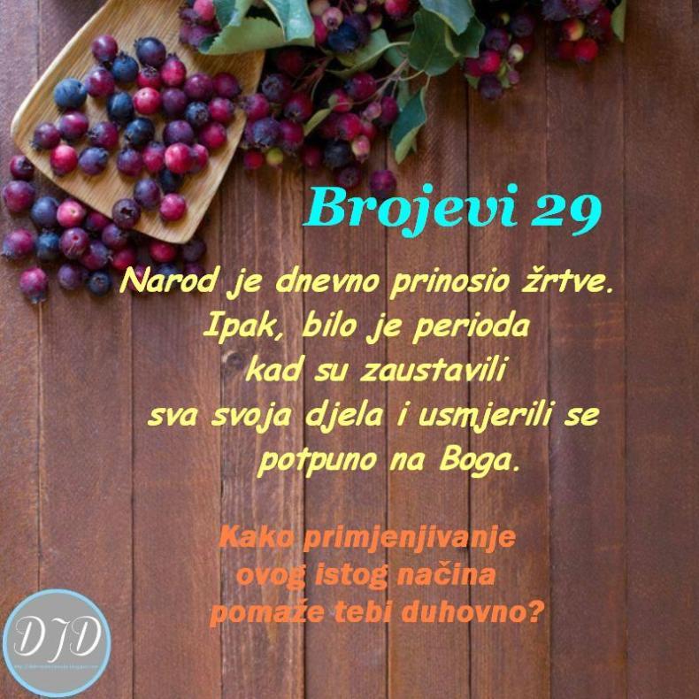 BR-pit 29