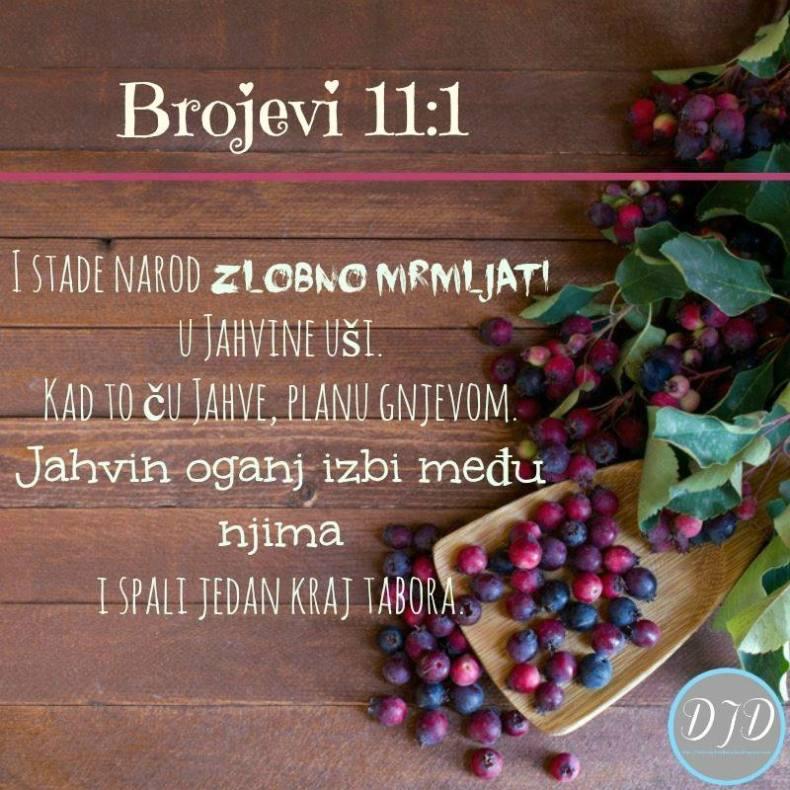 BR - stih 11