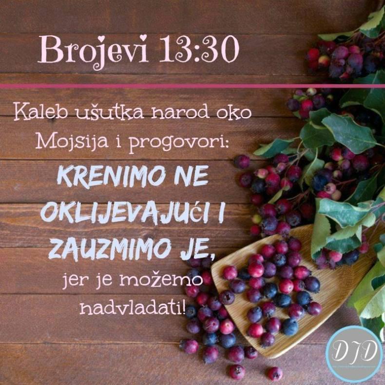 BR - stih 13