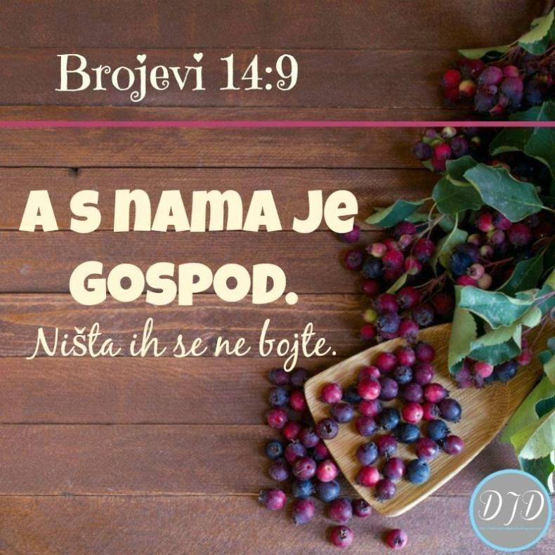 BR - stih 14