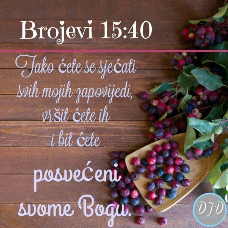 BR - stih 15