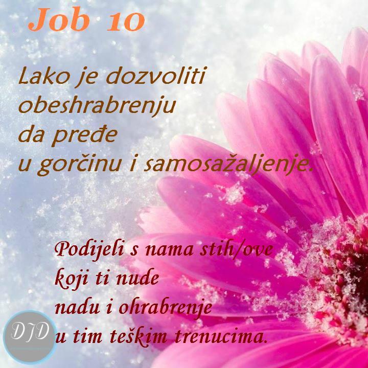 pit - 10