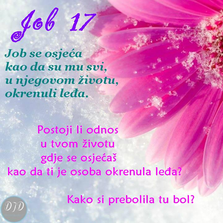 pit - Job 17