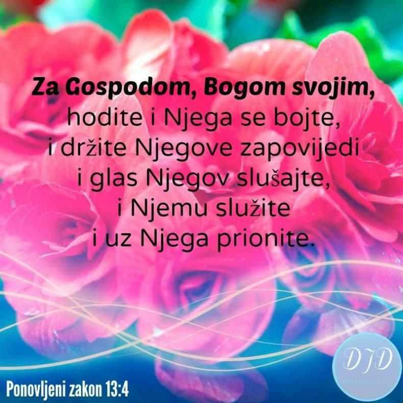 stih - 13