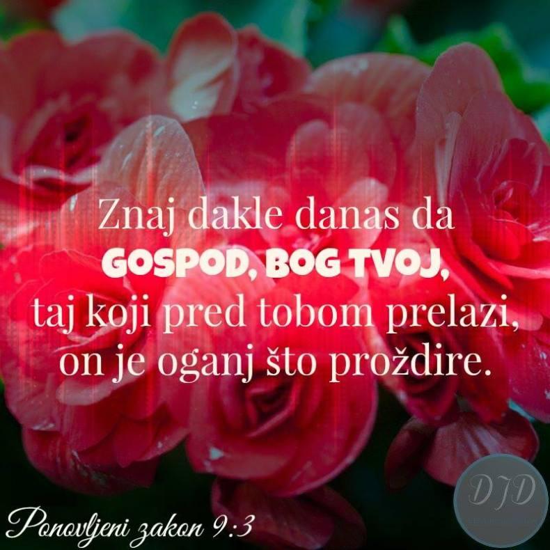 stih - 9