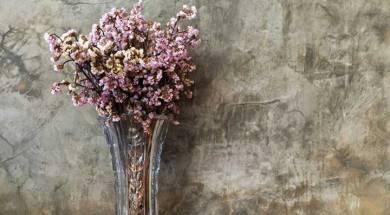 fiori-secchi-