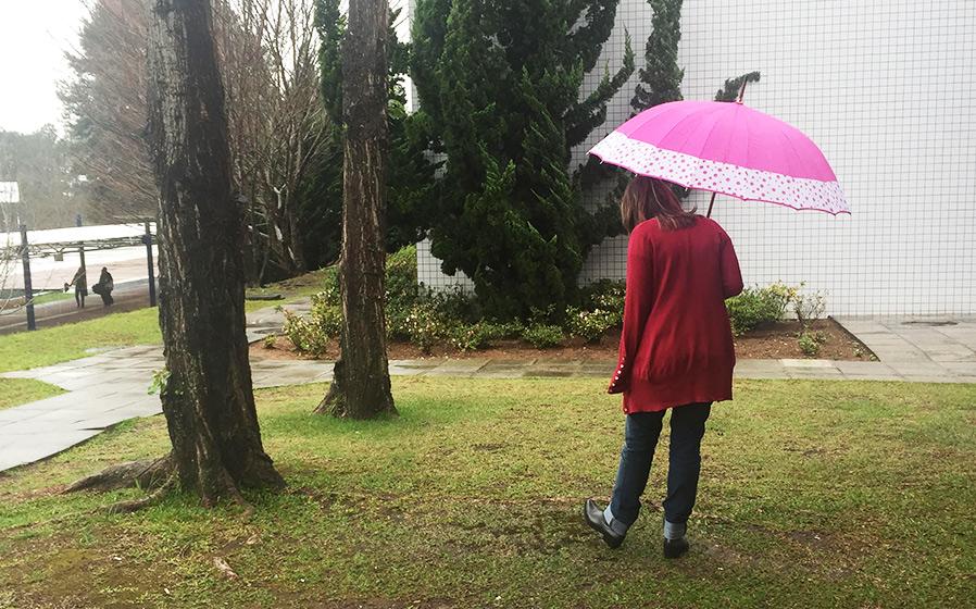 bota-melissa-chuva