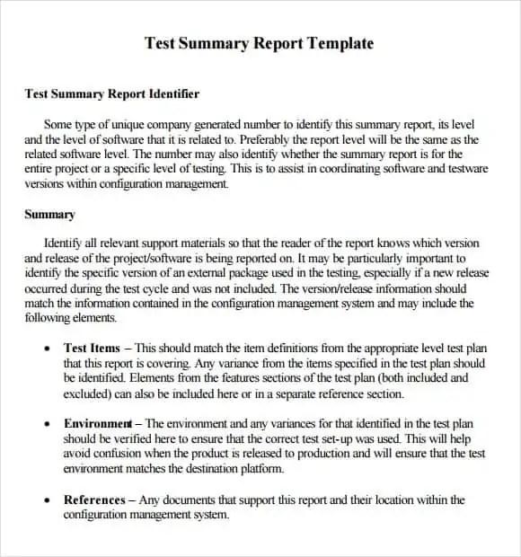 summary report template 12454