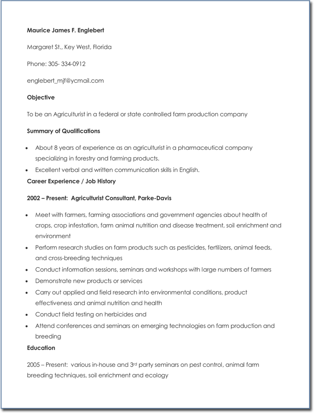resume experience summary