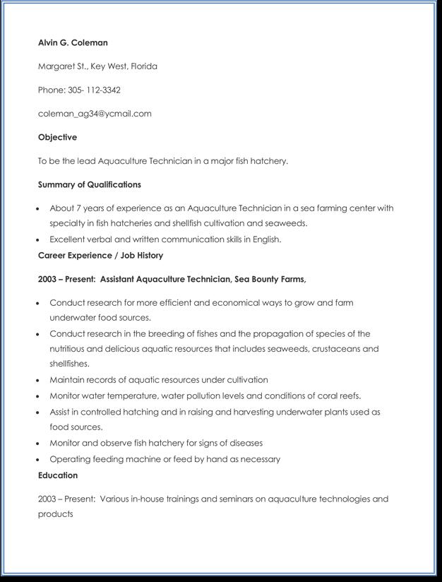 example job resume templates