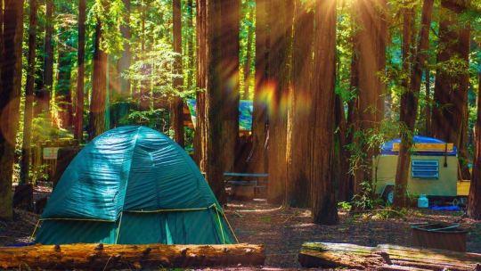 Voyage en Corse : trois astuces pour choisir son Camping !