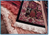Carpet Washing Service in NJ | Carpet Color Changing ...