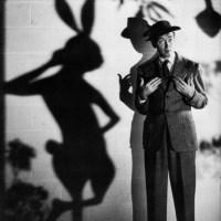 Word Mystery: rabbit / conejo / lapin