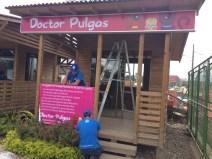 Doctor Pulgas en proceso