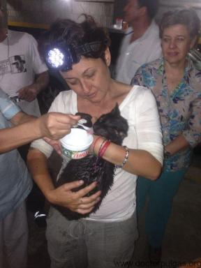 Sandra Arango y gata tomando leche