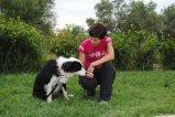 Etología de perros y gatos