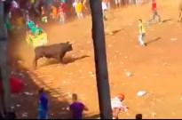 Imagen del toro minutos antes de ser linchado en Turbaco