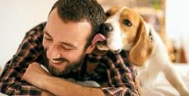Es importante conocer a tu perro y fortalecer su vínculo.