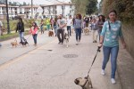 Marcha de educación sobre las razas llamadas ptencialmente peligrosas