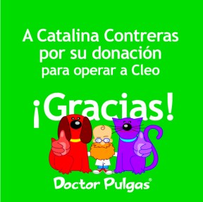 Gracias a Catalina Contreras