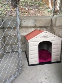 Casa para perro en canil.