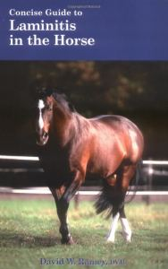 A Concise Guide to Laminitis in the Horse