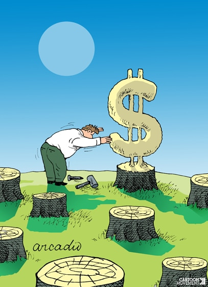 value_of_the_forest__arcadio_esquivel.jpeg