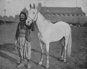 Syrian_man_with_Arabian_horse_1893