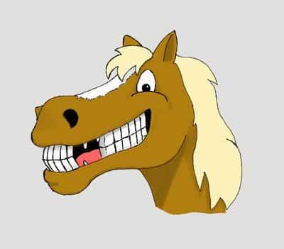 horse_smiling.jpg