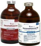 dexamethasone